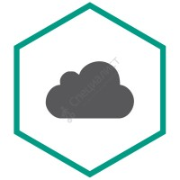 Kaspersky Endpoint Security Cloud (продление лицензии на 1 год  от 15 до 19 ПК/файлсерверов, от 30 до 38 моб. устройств) [KL4742RAMFR]