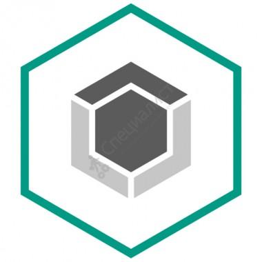 Kaspersky Endpoint Security для бизнеса Стандартный (media pack, дистрибутив) [KL8067RMZZZ]